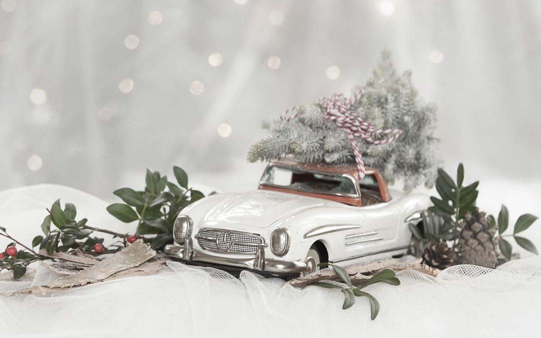 MERRY CHRISTMAS FROM LEMONADE DESIGN CO